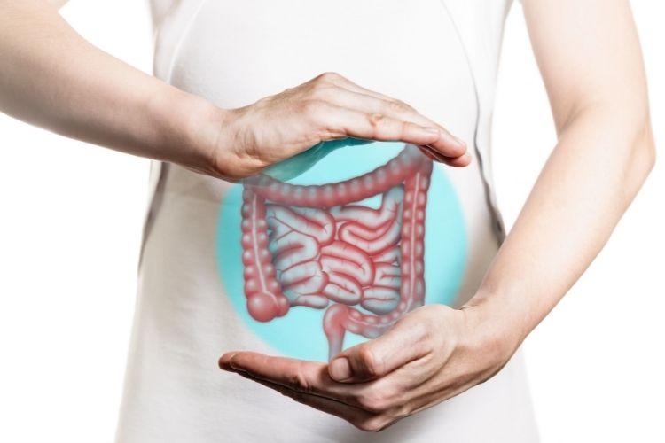 O que é obstrução intestinal? Conheça causas, sintomas e tratamentos